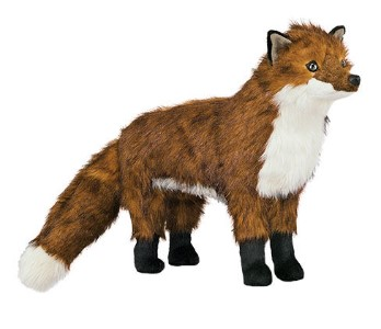 WL-40443-DZ- Red Fox Trek