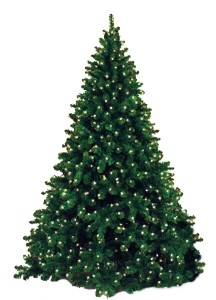 Natural 7.5' Tree Pre-Lit with Warm White LED Lights