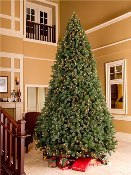 Classic Sequoia 9' Tree with Metal Stand