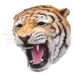 Tiger Head Wall Mount 2'  Life Size Prop Display