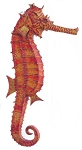 3.5' Small Sea Horse Life Like Statue Hanging Display