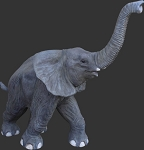 Life Size Standing Elephant Statue