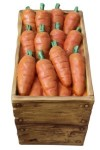 Case of Carrots 8