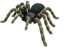 Life Like Over Sized Tarantula