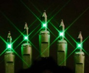 Green Incandescent Mini Lights 100 Count