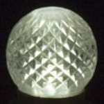 G30 Pure White SMD Retrofit Replacement Bulb