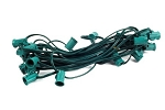 25' C7 Cordset E12 Sockets on Green Wire with 12