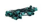 25' C9 Cordset E17 Sockets on Green Wire with 12